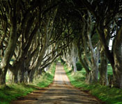Game of Thrones Tour from Belfast