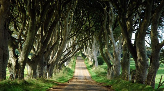 Game of Thrones Tour : Die Filmorte des Nordens und der Giant's Causeway